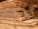 Maple Lumber KD 100 mm x 300 mm x 6 m