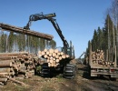 Sell a Major timber company