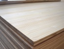 Glued Solid Wood Panel 10 mm x 500 mm x 1220 mm