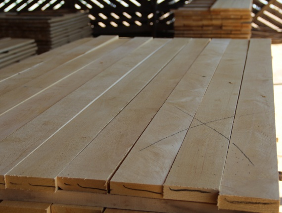 25 mm x 100 mm x 6000 mm AD Pressure Treated Birch Lumber