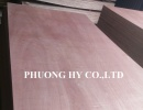 Plywood Bintangor Face Core Hardwood Glue MR #VN